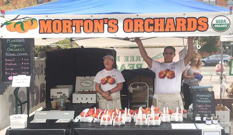 Mortons Organic Orchards booth